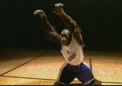 Animal Planet Basketball